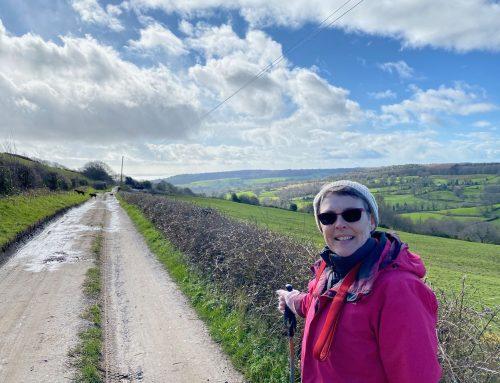Lambert's Castle & Coney's Castle Hillfort Walk – fabulous views